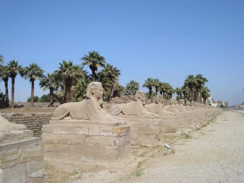 Long line of sphinxes lining a road called the Avenue of the Sphinxes in Luxor, Egypt