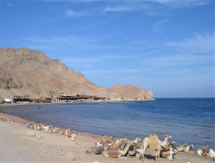 The Blue Hole, Dahab, Egypt with mountains in the background and camels in the foreground