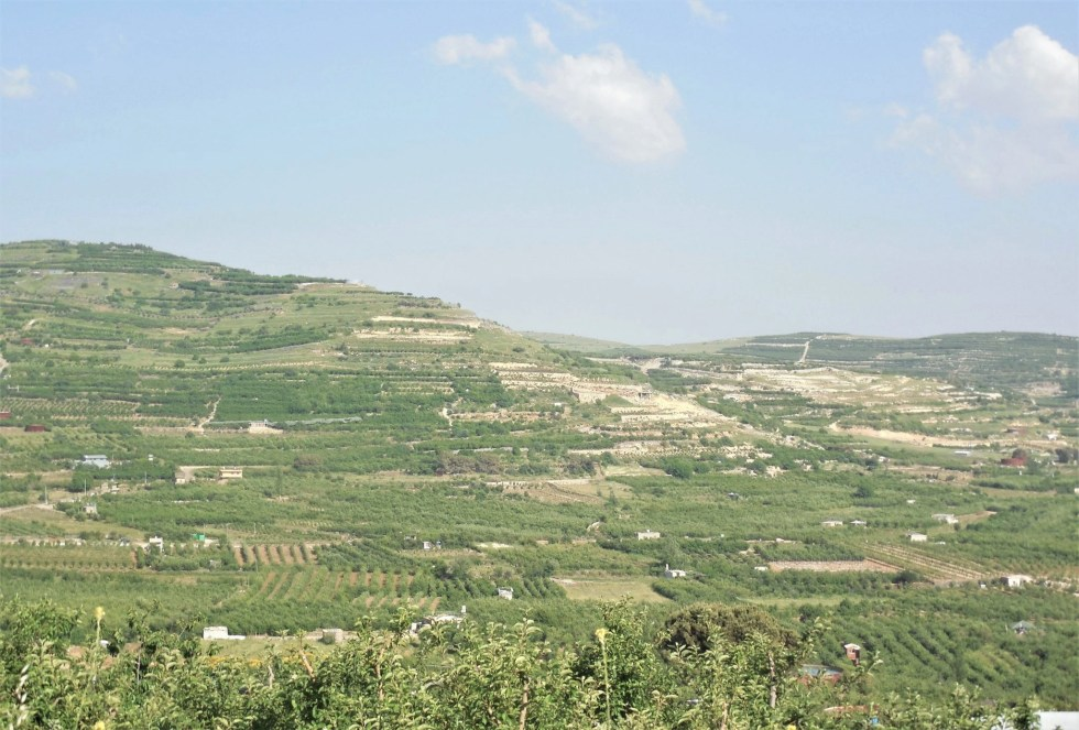 Open farmland in the Golan Heights, Israel
