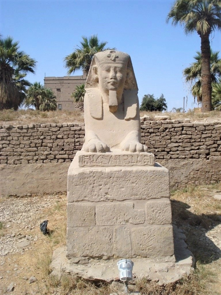 A solitary sphinx on the Avenue of the Sphinxes in Luxor, Egypt