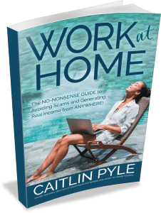 Work at Home book by Caitlin Pyle contains hundreds of pages of work-at-home tips
