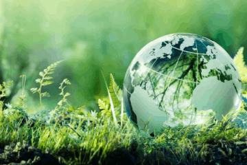 Importance of GIS in Environment