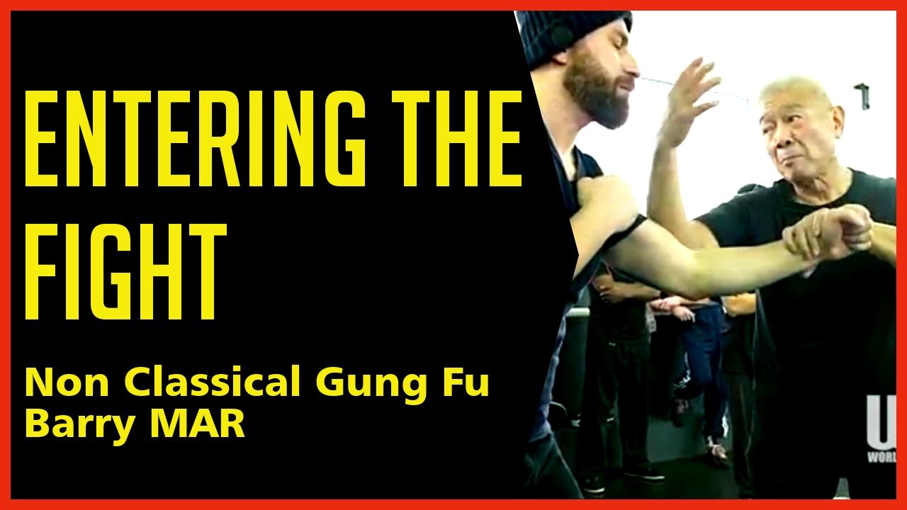 Wing Chun | World of Martial Arts | WOMA