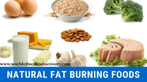 natural fat burning foods-woms