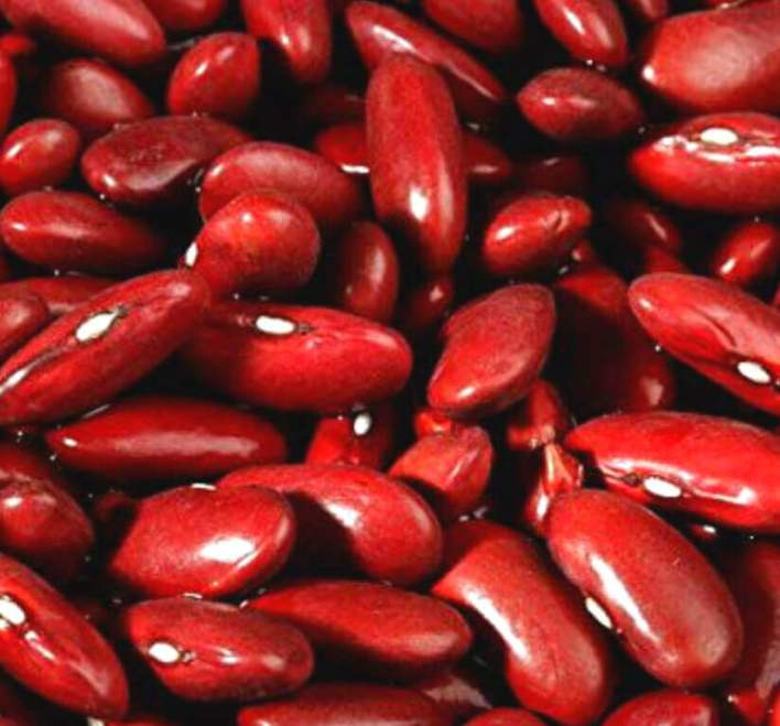 Natural fat burning foods - WOMS