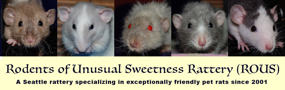 Rodents of Unusual Sweetness (ROUS)