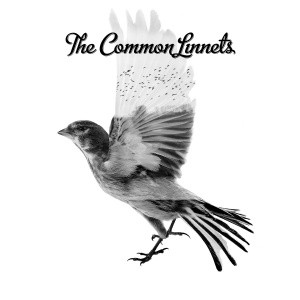 07 The Common Linnets