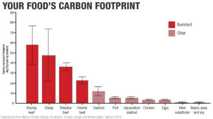 meat carbon footprint