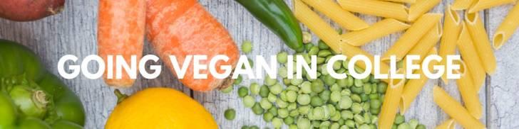 Vegan College Guide | How to Go Vegan | WorldofVegan.com | #vegan #vegetarian