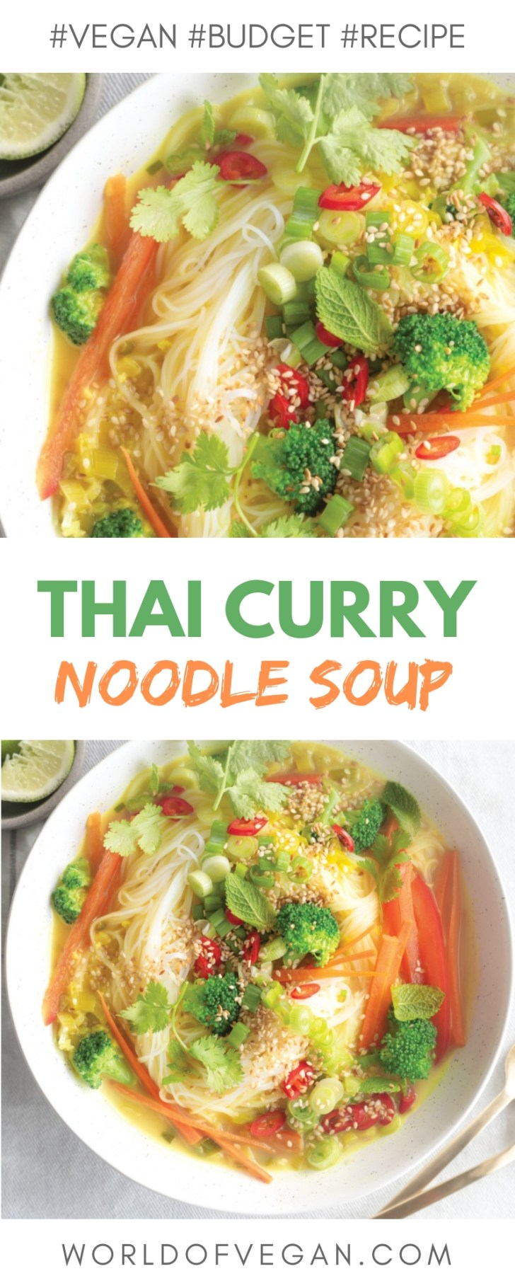 Thai Vermicelli Noodle Soup | Easy Vegan Recipe | WorldofVegan.com | #soup #thai #curry #vermicelli #noodle #winter #cozy #recipe #dinner #vegetarian