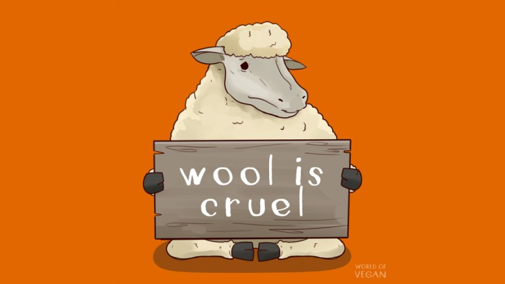 8 Reasons Why Wool Isn't as Innocent As You Think