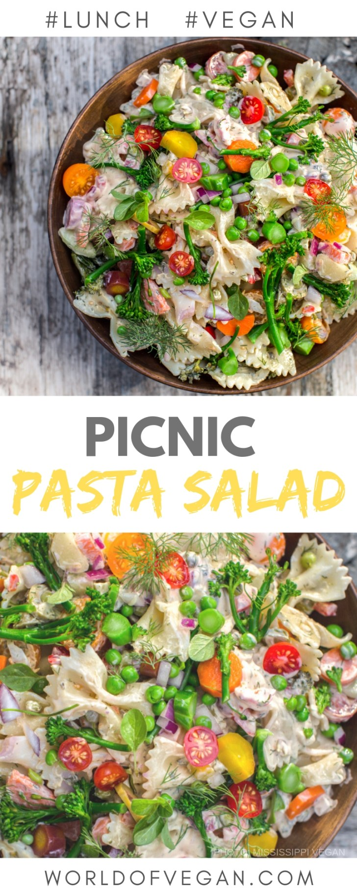Fresh Picnic Pasta Salad Recipe   World of Vegan   #picnic #pasta #salad #lunch #outdoors #summer