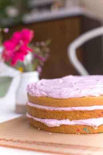 World of Vegan Birthday Cake Confetti Style With Vegan Sprinkles-13
