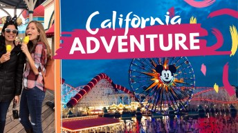 Vegan Guide to Disney's California Adventure