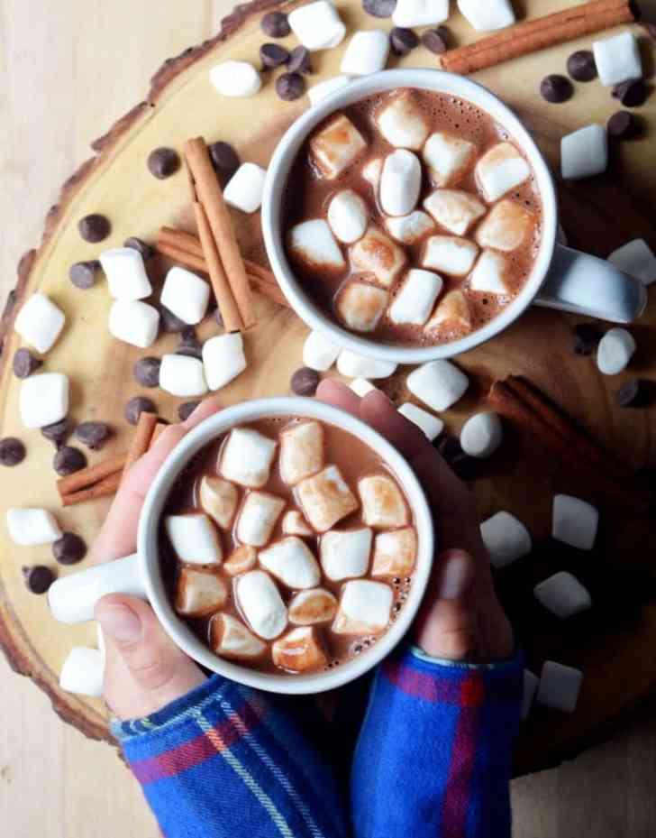 Cinnamon Vegan Hot Chocolate |Warm Beverage Recipe | World of Vegan | #hot #chocolate #cocoa #cinnamon #winter #fall #christmas #vegan #worldofvegan