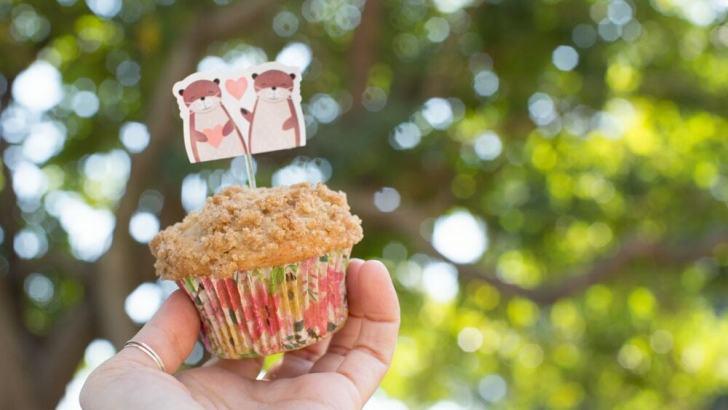 Vegan Crumb Muffins