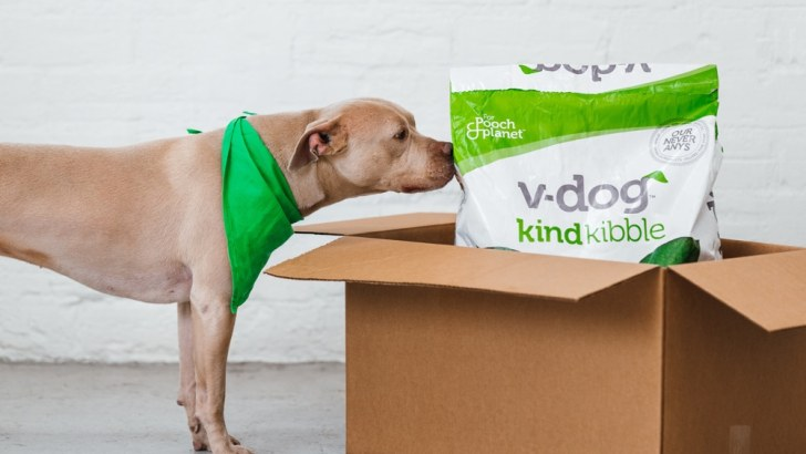The Many Benefits of a Vegan Diet for Dogs