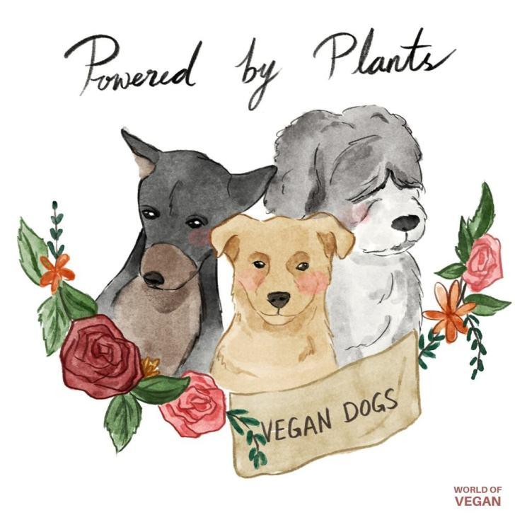 Vegan Dogs   WorldofVegan.com