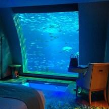 Singapore Aquarium Hotel Room