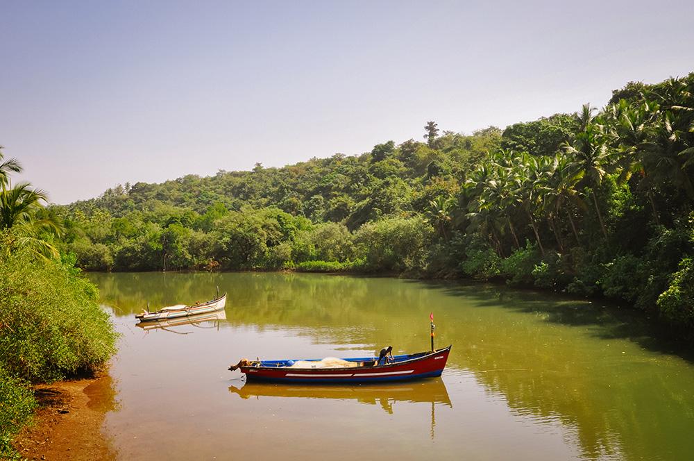 Goa, Backwaters