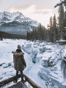 Guide Visiting Jasper National Park In Winter World