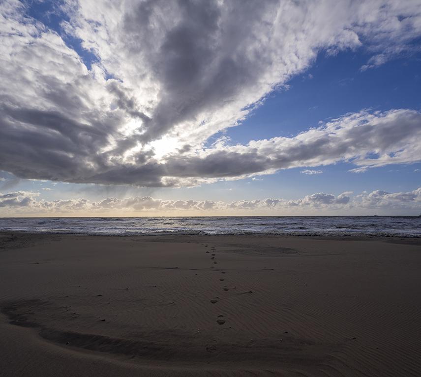 53. De zandmotor (beach)