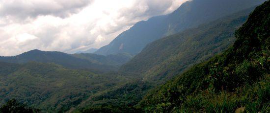 Chapare Region2