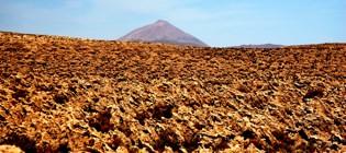 Coral Volcano