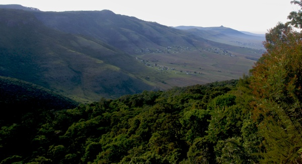 Hogsback View