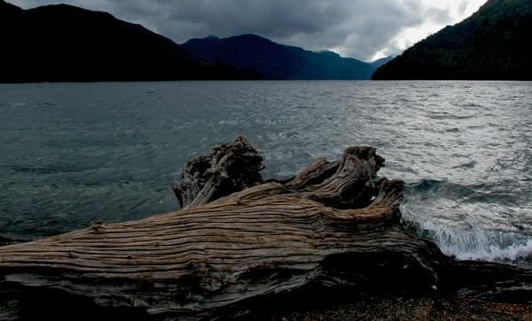 Lake District Log