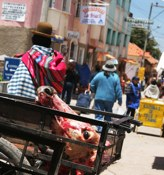 Market Day Head