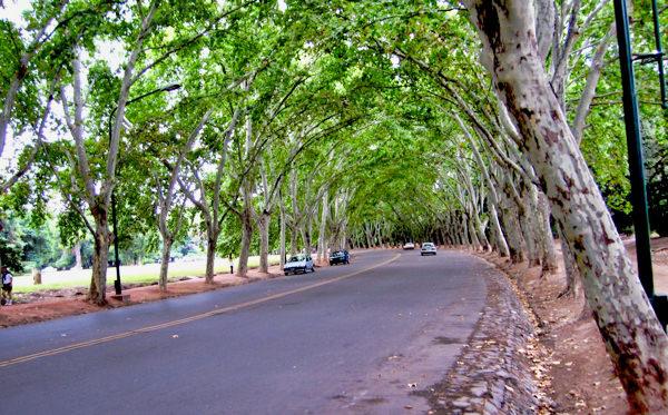 Mendoza Parque Sanmartin