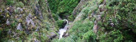 Waterfalling Pasto Road