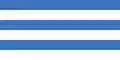 Tallinn flag