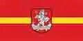 Vilnius flag
