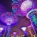 Singapore Gardens by the Bay (courtesy of Pixabay.com)