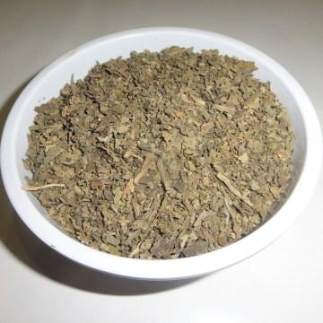 Lobelia Inflata (Indian Tobacco) Foliage