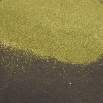 Eriodictyon Californicum (Yerba Santa) Wildharvested Leaf Powder