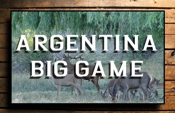 ARGENTINA BIG GAME BUTTON