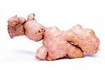 Top Ginger Exporters