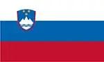 Slovenia's flag