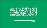Saudi Arabia's Top 10 Imports