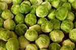Brussels sprouts (courtesy of Pixabay.com)