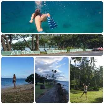 collage_hawaii-dive-trip