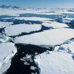 Is melting ice in Antarctica really bad for the environment?