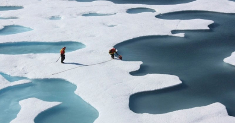 Arctic Ice, Effect of climate change
