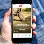 Kenyan white rhino joins Tinder to look for mate