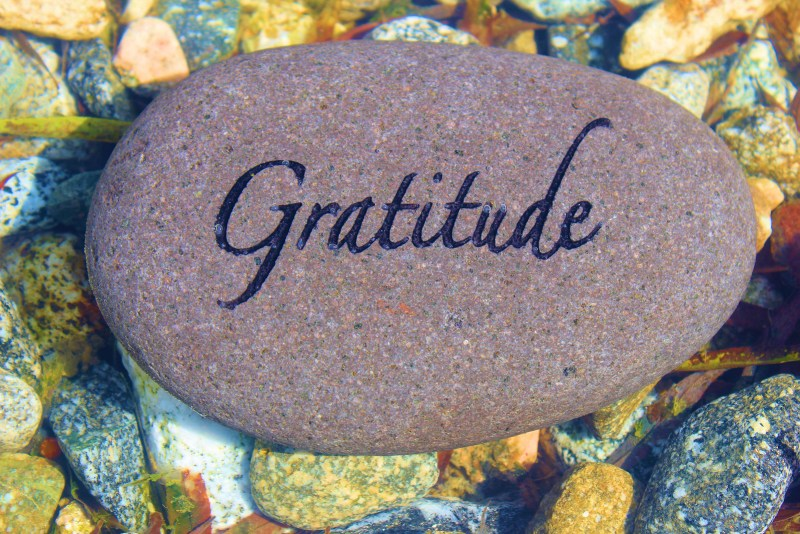 Change Your Focus towards Gratitude - life hacks for Happiness