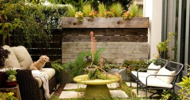 DIY Backyard Ideas to Landscape Backyard