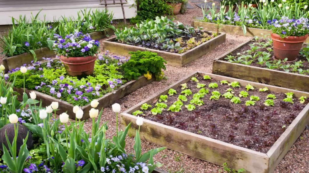 Raised garden beds, simple DIY backyard ideas